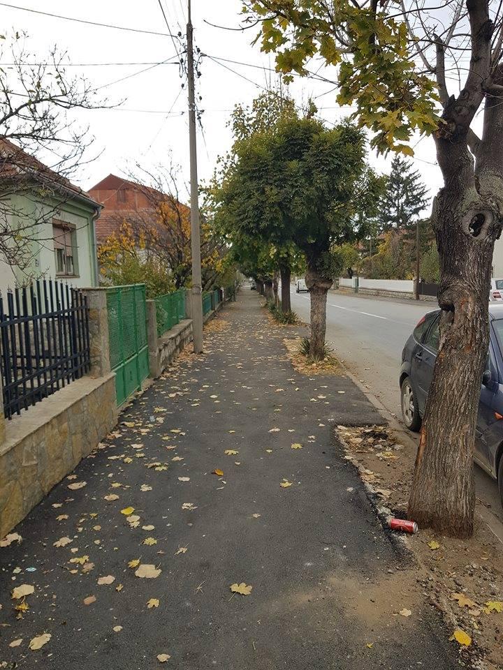 Asfaltiran trotoar u Mile Julin