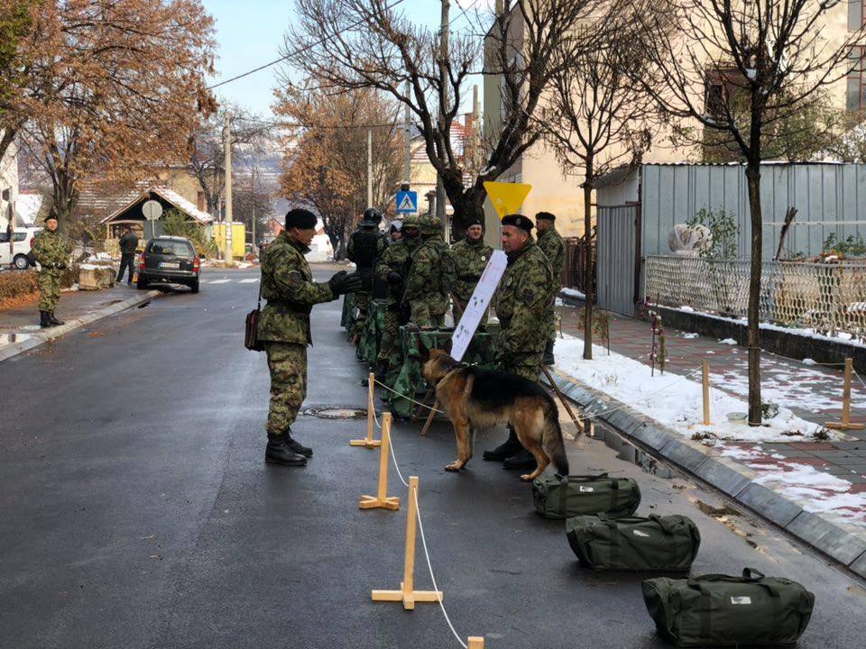 Ilustracija, vojska, foto M.M.