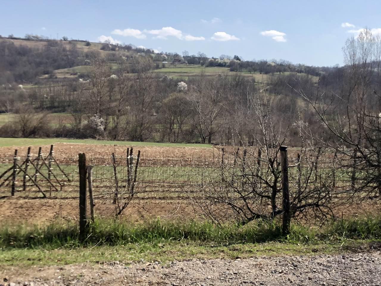 Pospešivanje poljoprivredne proizvodnje u Knjaževcu