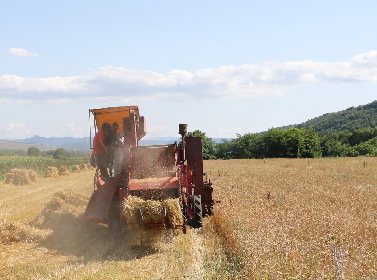 Zbog suše država seljacima oprašta 90 miliona