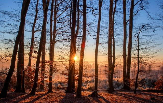 Sunčana zima, ilustracija, foto: Pixabay