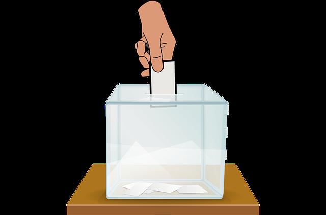 Izbori, ilustracija, foto: Pixabay