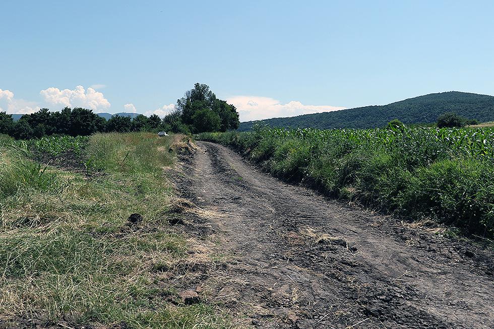 Atarski put, ilustracija, foto: M. Miladinović, Knjaževačke novine