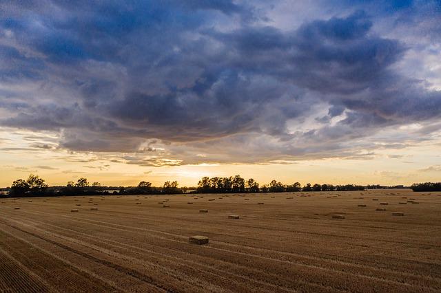 Polje, foto ilustracija: Marcin, pixabay